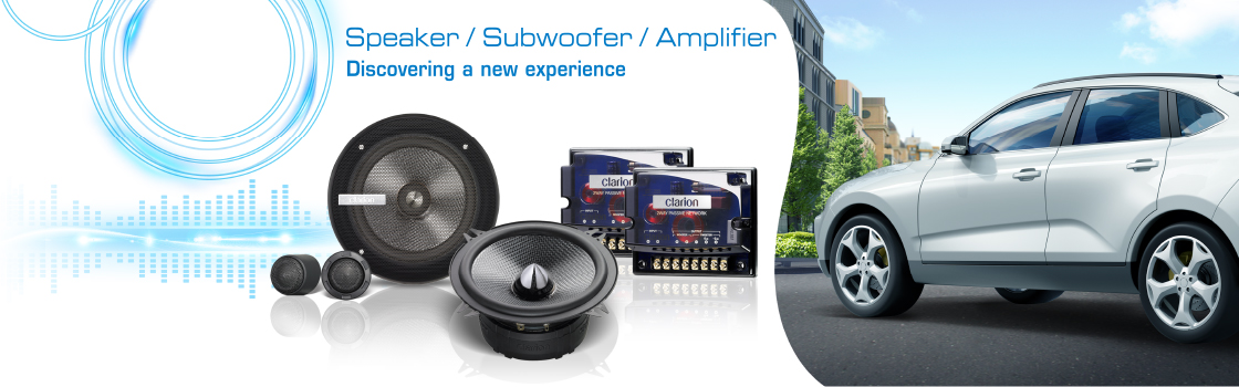 Loa/Amplifier/Subwoofer